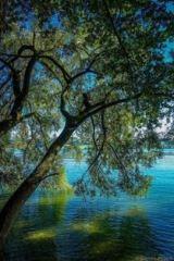 La serenità è il solo stato di grazia