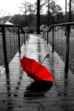 Quando piove
